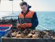 Stratégie DLAL FEAMP : soutien aux filières pêche et aquaculture