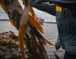 Soutien au développement de la filière algues en Pays de Brest