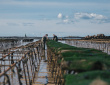 Ateliers avec les acteurs maritimes (DLAL FEAMP)